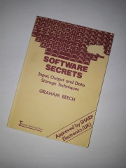 Software Secrets Input, Output and Data Storage Techniques
